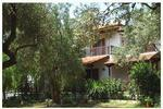 HOUSE KATIA, Apartments, Kalamos, Magnissia